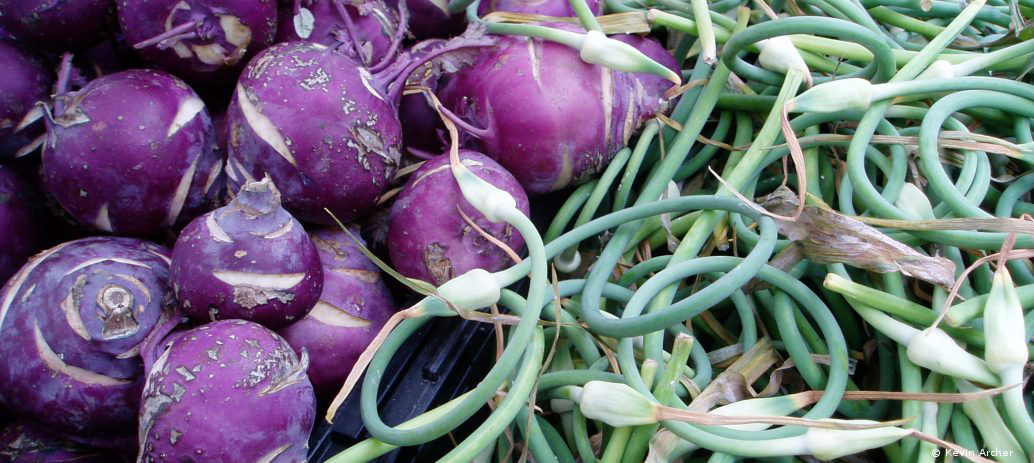 Kohlrabi and Scapes