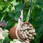 This simple bee house shelters native solitary bees in the midst of a garden to feed them.