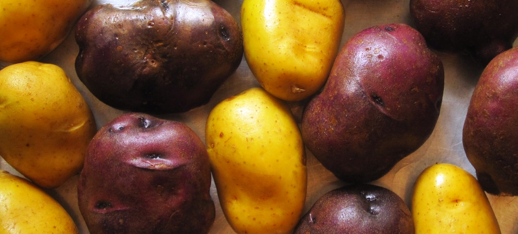 Potatoes 1024x463