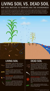 Living Soil vs Dead Soil, National Resources Defense Council. (http://switchboard.nrdc.org/blogs/coconnor/5_signs_of_healthy_soil_in_hon.html)