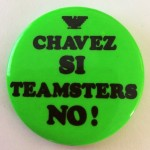 """Chavez Si! Teamsters No!"" button courtesy of Valerie Hunken"