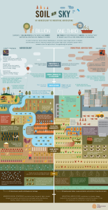 Soil to Sky Infographic from the Christensen Fund, via Nourishing the Planet
